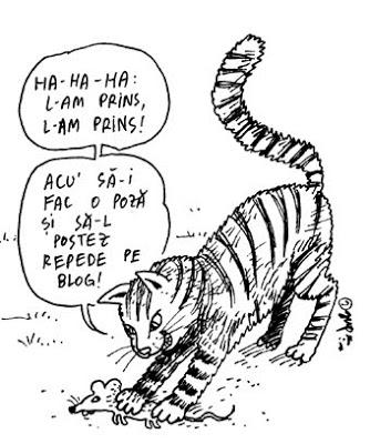 Image result for caricaturi ro